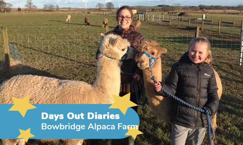 Bowbridge Alpaca Farm